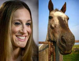 Some say SJP looks like a horse....