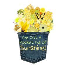 Pocket of Sunshine